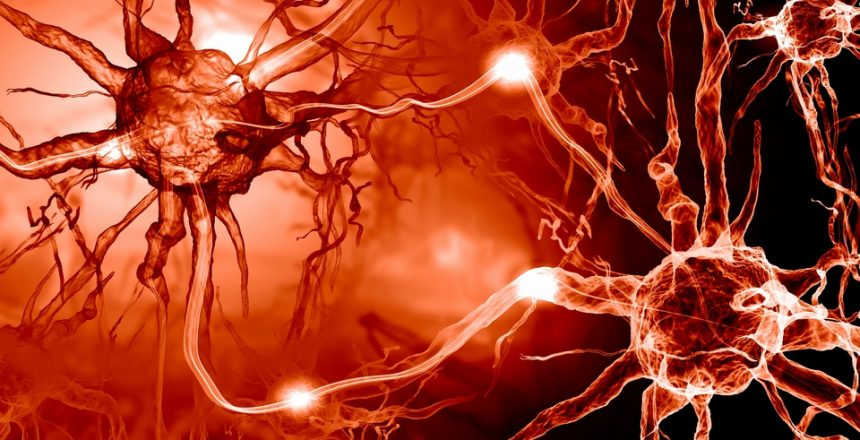 Alterations in the Brain May Occur as Early as 34 Years Before the Symptoms of Alzheimer's Disease Appear